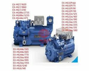EXHG EXHGX explosion proof gea bock compressor